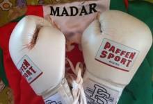 Legyen Öné Madár bokszkesztyűje!