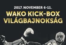 Egy hónap múlva kezdődik a budapesti kick-box vb