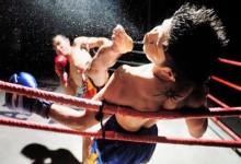GIF-ben meséljük el, milyen a véres-kemény-brutális Muay Thai