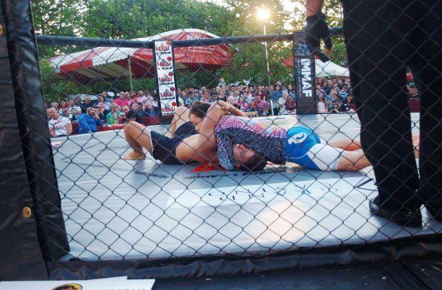 3.Fuji Fight MMA