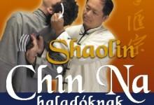 Hatásos önvédelmi Chin Na-technikák