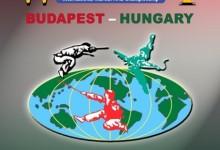 Harcművész világbajnokságot rendez Budapest
