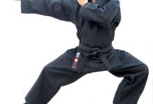 Ninjutsu: Rejtélyes harcosok ősi harcművészete, ma életet menthet.