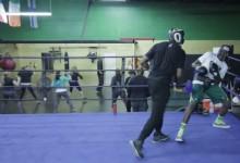 Profi bokszolóval engedte össze erőszakos fiát a hónap apukája