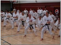 "A furcsa ""karate"" – 9. dan, Michael T. Dealy – Hiteles?"