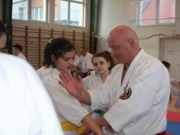 Szokatlanul sokrétű harcművészeti szemináriumot rendeztek Bajnán