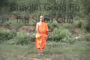 Shaolin bo technikák