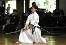 A harcművészetek evolúciójáról