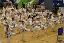 Tízezer ütés, rúgás, védés: kőkemény próbatétel a III. Karate Maratonon