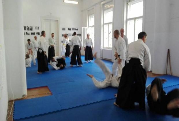 Sikeres Aikido szeminárium Békéscsabán