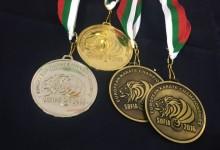 20 éremmel dominálta a magyar csapat a Shinkyokushin Eb mezőnyét