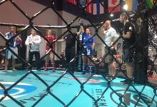 Magyar TKO, drámai fordulat az UFC előszobájából