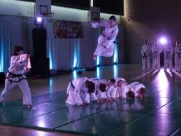 Példát lehet venni az 5. Budo Veszprém harcművészeti napról