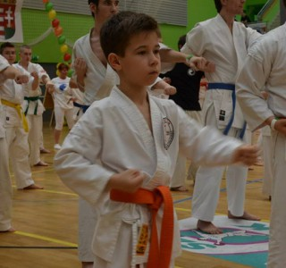 Újra Karate Maraton!