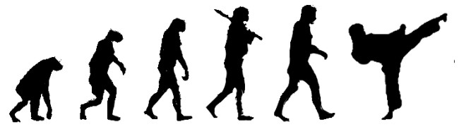 karate___evolution_by_karnol