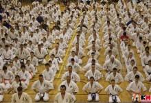 Megvan a következő Karate Maraton időpontja!