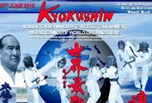 Pénteken mutatják az All-Kyokushin Karate vb összefoglalóját a Sport TV-n