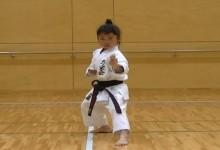 A nap videója: ilyen, amikor a japán gyermek apja egy igazi Sensei