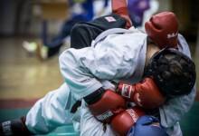 MÉRFÖLDKŐ: Megalakult a Magyar Sport Ju-jitsu Szakszövetség