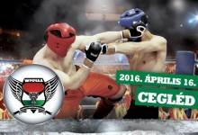 Cegléden rendezik az MMA világszövetség magyar bajnokságát