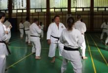 """""""Rossz karate, harcművészet nincs, csak rossz tanító"""" – riport Sáfár László mesterrel"""
