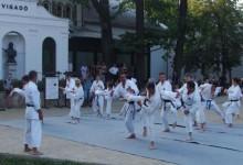 Japán Nap Gyulán – harcművészettel