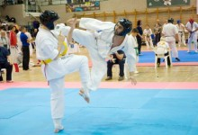 IV. HINOMOTO-IBK Nemzetközi Nyílt Kyokushin Karate Kupa