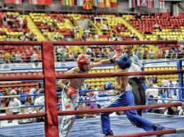 A hazai kick-box világkupán térne vissza Veres Roland