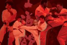 Májusban és Pestszentimrén rendezik a Nyílt Shidokan Karate Világbajnokságot
